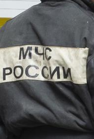 В Челябинске при пожаре в частном доме погибли женщина и двое детей