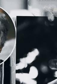 Поэт Валерий Краснопольский рассказал о поэтическом даре Михаила Жванецкого и о его неизданной книге