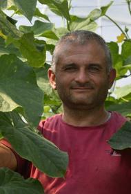 Продолжать и развиваться: ЛПХ на Кубани получат господдержку в виде субсидий