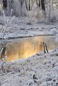 Синоптики предупредили о первых заморозках в Москве и гололедице на дорогах