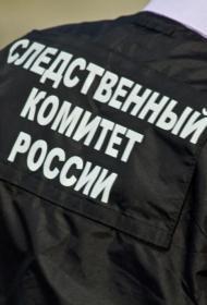 В Петербурге подросток с оружием ночью напал на мать, отца и 6-летнего ребенка