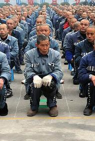 Уйгурских боевиков защитят Соединённые Штаты