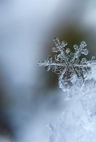 Синоптик Позднякова предупредила о снеге в Москве в ночь на вторник