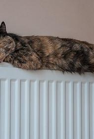 Мэрия Краснодара пообещала включить отопление во всех домах