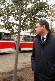 Мэр Краснодара проверил ход работ по пересадке лип
