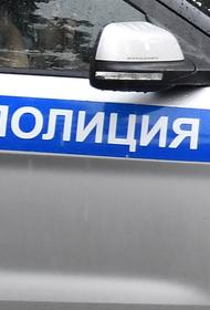 Задержан подозреваемый в убийстве двух женщин и ранении ребенка в Подмосковье