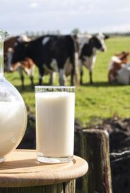 Перспективы развития малого агробизнеса