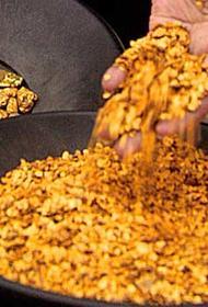 Депутатское золото. Генпрокуратура требует изъять у депутата Госдумы кусок золотого рудника в Приморье