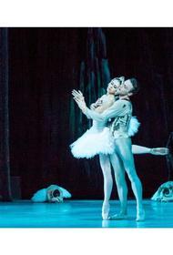 Краснодарский театр покажет онлайн-балет