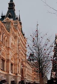 Депутат Нилов оценил идею сокращения первого рабочего дня после новогодних праздников