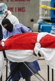 Число заразившихся COVID-19 в мире превысило 53 миллиона человек