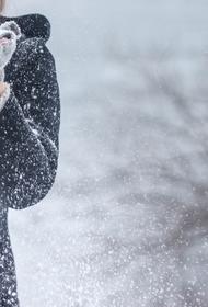 Синоптик  Вильфанд предупредил о похолодании до -10 градусов в центре Европейской России