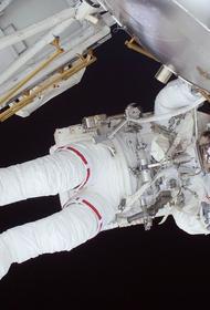 Crew Dragon с четырьмя астронавтами отравился на МКС. Трамп и Байден поздравили NASA с успешным запуском