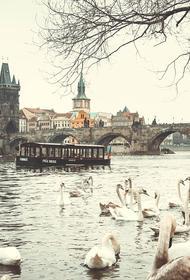 Чехия может продлить режим ЧС из-за коронавируса почти до Рождества
