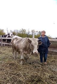 Когда фермерство становится образом жизни