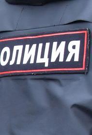 Источник в органах: в Петербурге ссора в родительском чате закончилась массовой дракой