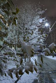 Синоптик Вильфанд предупредил об аномально теплой неделе в нескольких регионах России