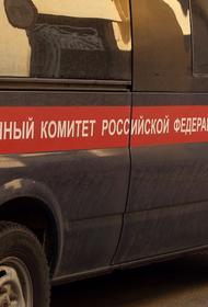 Членов семьи погибшего в ДТП с Ефремовым проверяют на дачу ложных показаний