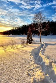В трёх районах Новгородской области непогода привела к отключение электроэнергии