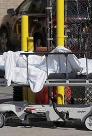 В Нью-Йорке с весны не могут захоронить около 650 тел погибших от COVID-19
