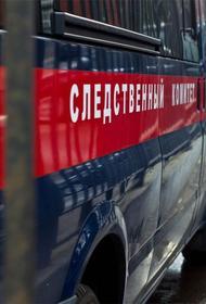 В Петербурге дело возбуждено из-за драки после конфликта в родительском чате