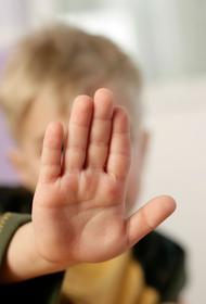 Штраф за детские слёзы. Попытка защитить ребёнка может привести к разорению СМИ