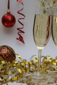 Аналитики рассказали, какие места россияне считают идеальными для встречи Нового года