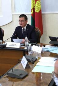 Закон о развитии виноградарства и виноделия на Кубани принят окончательно