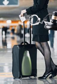 Трем бортпроводникам рейса Москва – Нью-Йорк грозит пожизненное заключение за контрабанду наркотиков