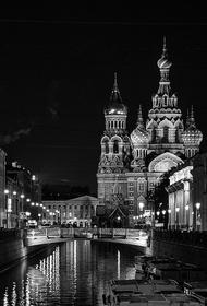 Следственный комитет Санкт-Петербурга начал проверку по факту загрязнения реки