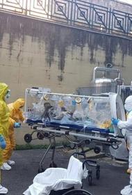 Алтайские медики на войне с коронавирусом выбирают, кого спасать в первую очередь
