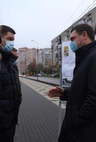 На месте снесённых гаражей в Краснодаре посадят сосны