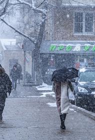 1 декабря в Москве выпадет семь сантиметров снега
