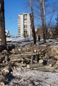 Вопрос с территорией хабаровского парка «Динамо» снова открыт