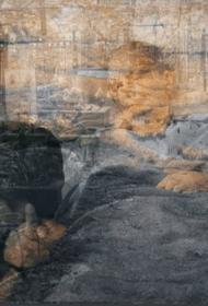 Жители Аральска рассказали о высохшем море и о последствиях бедствия