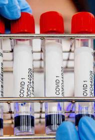 В России выявили 27 100 новых случаев заражения COVID-19