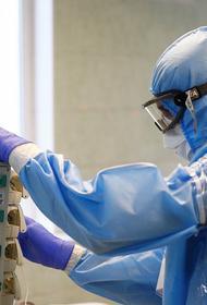 За сутки семеро кубанцев скончались от коронавируса