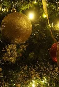 В России официально открылась первая новогодняя елка