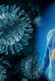 Вирусы: возможно ли уберечься?
