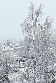 В Гидрометцентре предупредили, что в Москве снега можно ждать во второй половине декабря