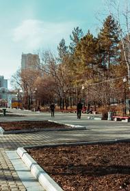 Мэр Хабаровска проигнорировал просьбы горожан не строить дома у парка