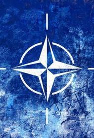 Депутат Госдумы Новиков оценил слова главы НАТО Столтенберга о «военной мощи России в Крыму»