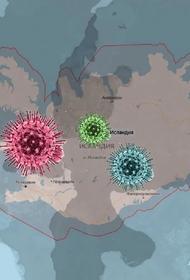 О том, как с коронавирусом справилась Исландия