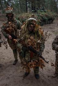 Украинский политолог Семченко озвучил возможный сценарий появления «второго Донбасса» в Закарпатье