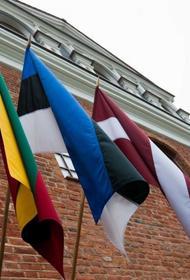 Прибалтийские страны распустили объединенный батальон BALTBAT