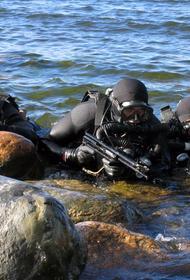 Полк украинских националистов «Азов» обзавелся водолазами-диверсантами