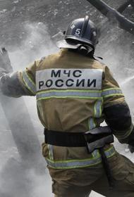 В Ростове-на-Дону горит рынок «Классик», где загорелся павильон с пиротехникой