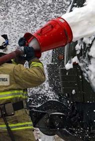 Двое взрослых и ребенок погибли при пожаре в жилом доме в Нижегородской области