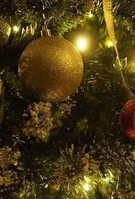Специалисты МЧС рассказали, как украшать новогоднюю елку, чтобы избежать пожара