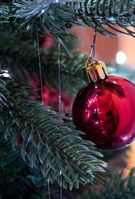 Руководство Волгоградской области объявило 31 декабря выходным днем